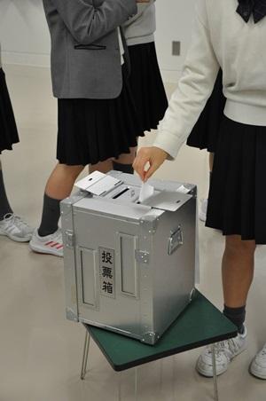 2018模擬投票