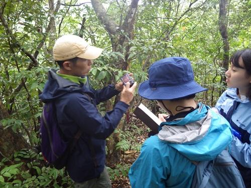 2019西表野生生物調査隊